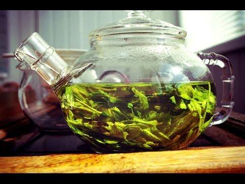 Как влияет зеленый чай на мужчин: вред и польза