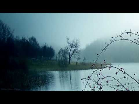 3hours video in 4k nature session - fog on lake Rootice, ambient audio transparency