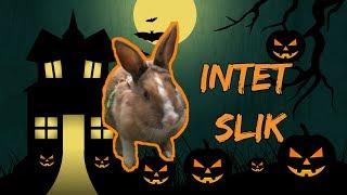 Merles Halloween går lidt galt... l Olivias Verden