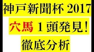 神戸新聞杯2017【穴馬1頭】発見!徹底分析