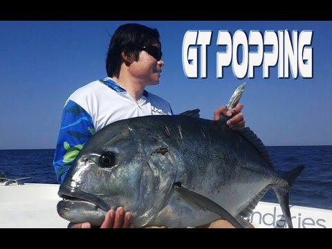 Fishing in Oman. Monster GT, Black Tip trevally, Tuna caught by GreenAnglers in Southern Oman.