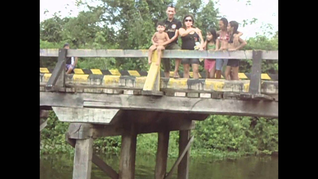 Peixe-Boi Pará fonte: i.ytimg.com