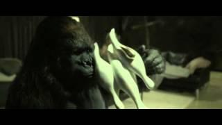 Signora malata fa sesso con un gorilla