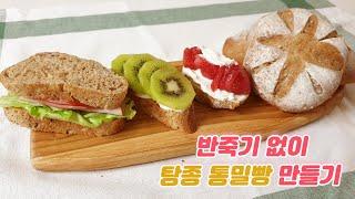 [베이킹] 반죽기 없이 탕종 통밀빵 만들기
