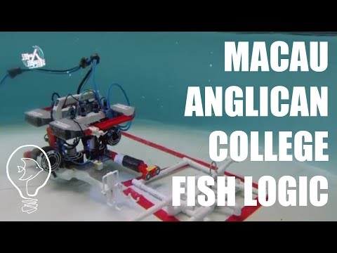 Fish Logic from Macau Anglican College. 澳門人澳門事 - 第1815集 水底機械人