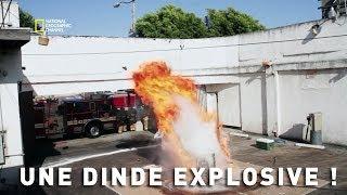 Genius - Une dinde explosive !