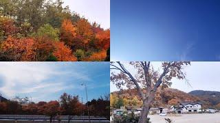 아주 예쁜 가을풍경 모음❤ 역시 가을은 예뻐...
