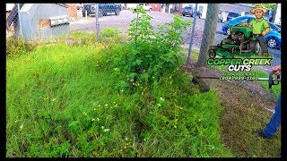 City Threatens Fines For Business's Overgrown Lot (Mowing Tall Grass)