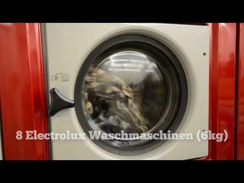 Waschsalon Berlin-Wittenau - Oranienburgerstr. 196
