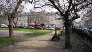 Queen Square trees under threat