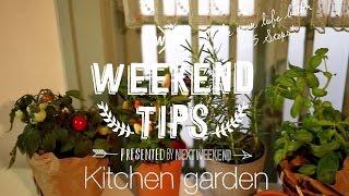 料理をしながらプチ野菜を収穫!キッチンにグリーンを | ちょっと素敵な週末の作り方【WEEKEND TIPS】