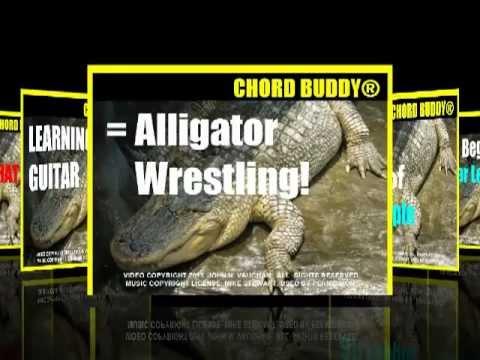 Chord Buddy Reviews Real Chord Buddy Reviews - YouTube
