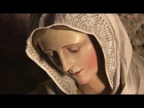 Meditation on the Joyful Mysteries with Fr. Peyton, C.S.C.