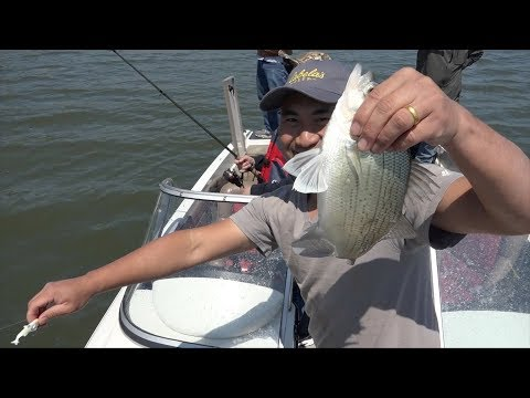 White Bass Fishing  In SD 2018 GD Entertainment