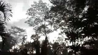 バリ島テガラランの朝。
