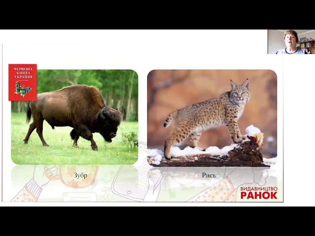 4 клас. Природознавство. Створюємо проєкт. Охорона природи.
