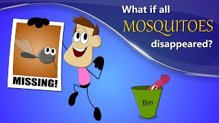 What if all Mosquitoes Disappeared? | #aumsum