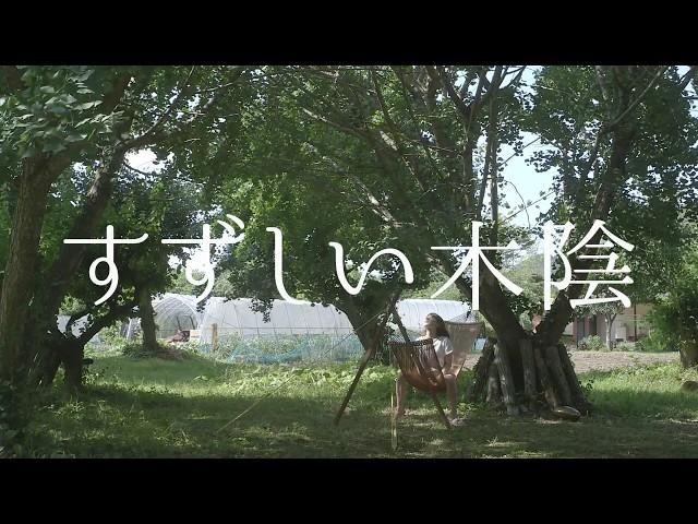 映画『すずしい木陰』予告編
