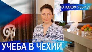 Учеба в Чехии для россиян. Как получить образование в Чехии