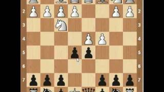 Chess Openings- Albin Counter Gambit YouTube Videos