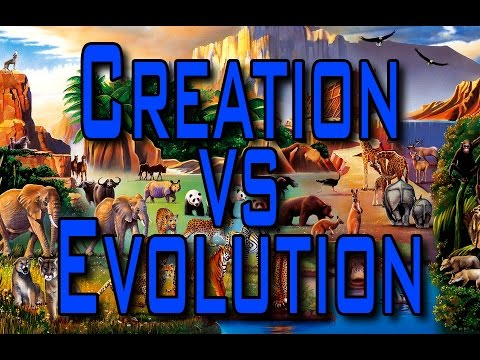 Image result for evolution or creation image?