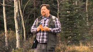 How to properly use bear spray MP3