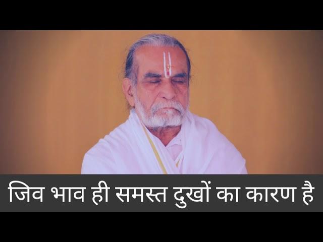 हमारे समस्त दुःखों का कारण क्या है?  | Punitachariji Maharaj | Girnar | Junagadh