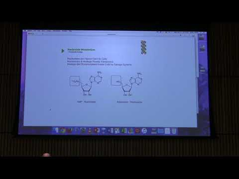 Lecture #43 Ahern's BB 451 - DNA Replication I