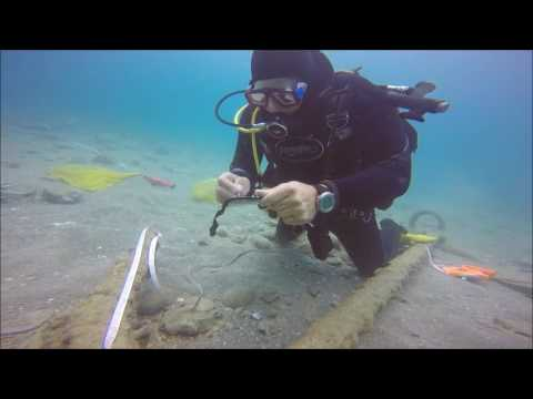 Incredible sunken treasure trove found on Israel's seabed