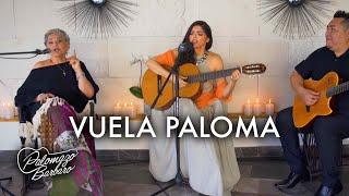 Ana Barbara - Vuela Paloma ft. Titi (Video Oficial)