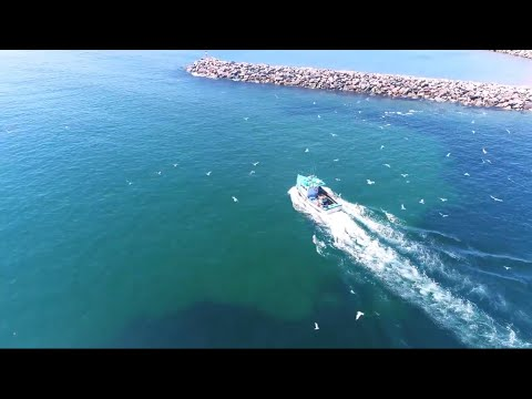 CAPE BRETON LOBSTER FISHING !