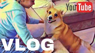 Реакция Собаки на РЕБЕНКА! Зоопарк/Ботанический сад/ПАСХА