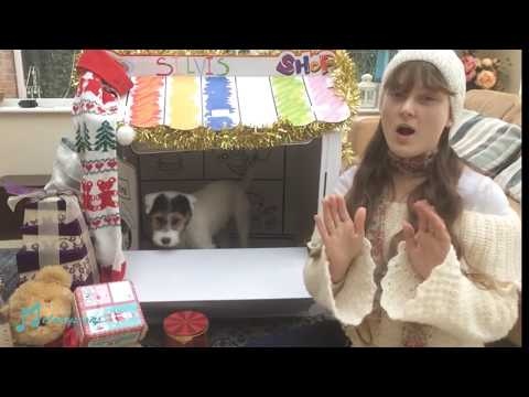 Lonely Pup In A Christmas Shop (Adam Faith) - Makaton Sign Language
