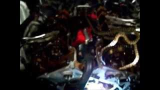 Dodge Magnum `05 w 2.7l pt.2 water pump replace timing chains