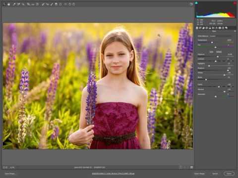 Настройка программы Adobe Bridge