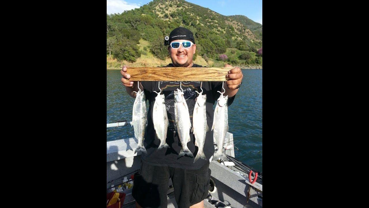 Lake Berryessa Salmon Fishing Youtube