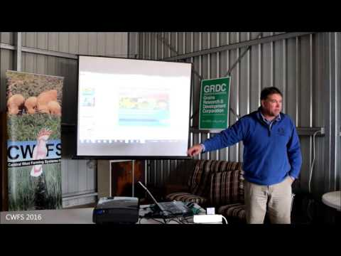 Mick Neave (CSIRO) on beneficial predator insects in our agricultural landscape.