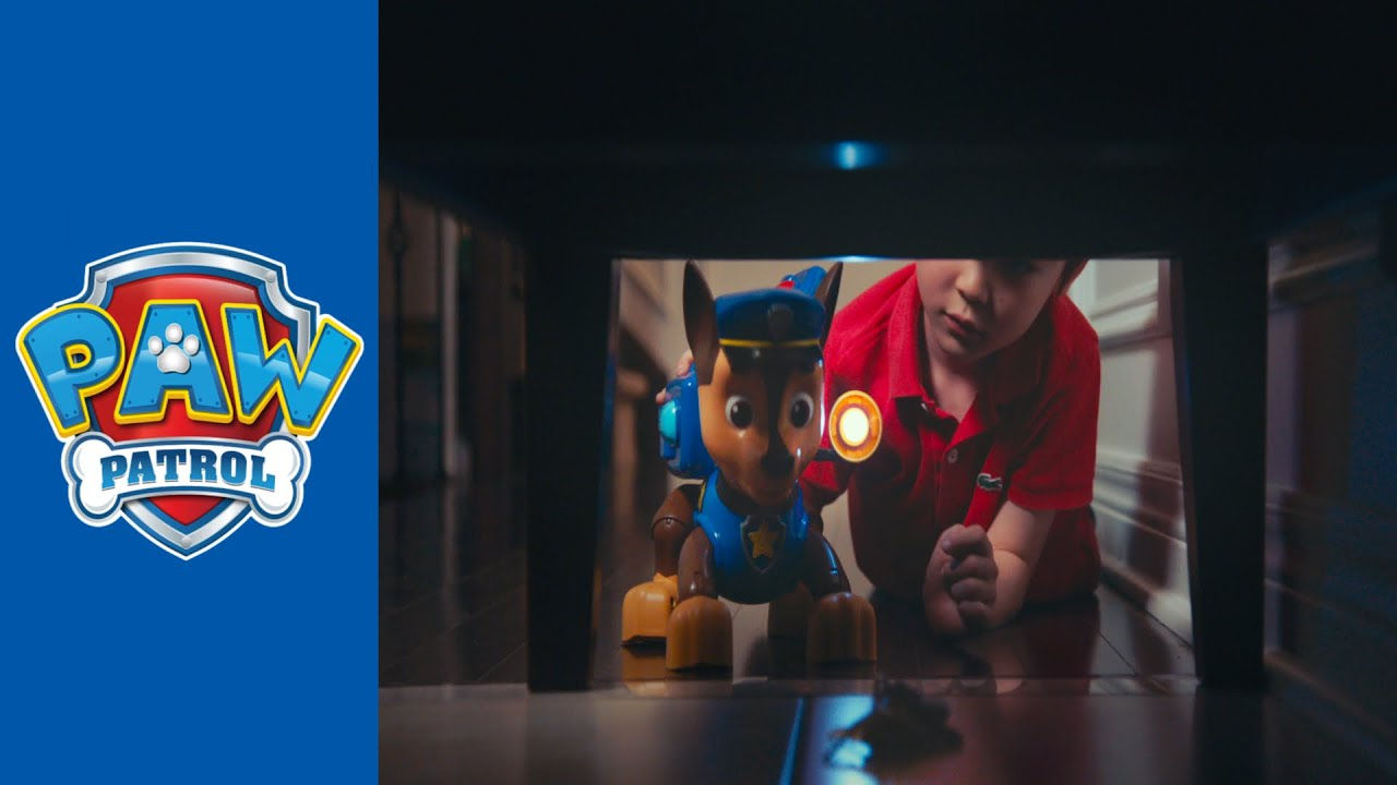 PAW Patrol | Meet Mission Chase (2015)