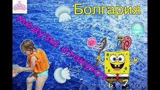 �������� ���� Болгария Солнечный берег 2017 Бассейн Море Ловим медузу ������