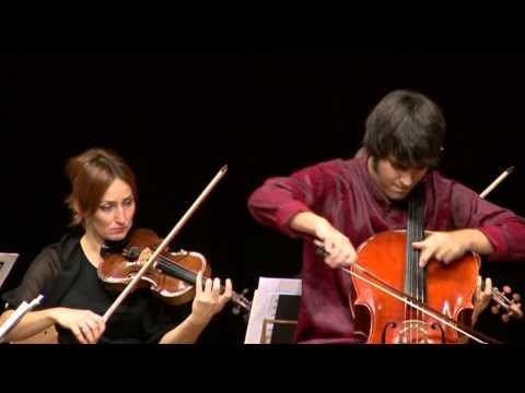 Vid Veljak - Carl Stamitz: Konzert für Violoncello und Orchester in G Dur - 1. Satz