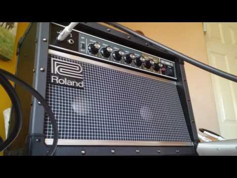 roland jc22 jazz chorus guitar combo amplifier. Black Bedroom Furniture Sets. Home Design Ideas