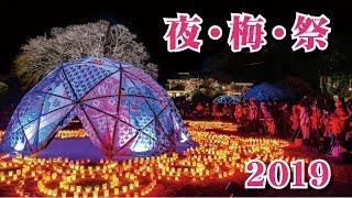 【告知】夜・梅・祭2019