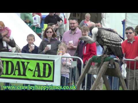 Blindley Heath Country Show 2104