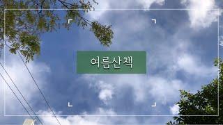 [Vlog]여름 산책/힐링영상/풍경/비오는날/맑은날