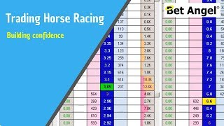 Betfair trading - Building confidence with a simple trade
