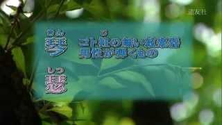 雅楽のことば ミニ辞典07 「琴瑟相和す」