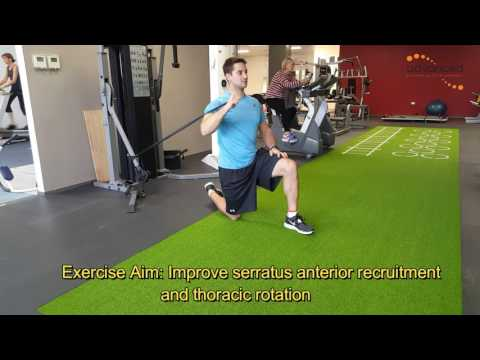 SHOULDER EXERCISES Thera-band Cross Body Punch
