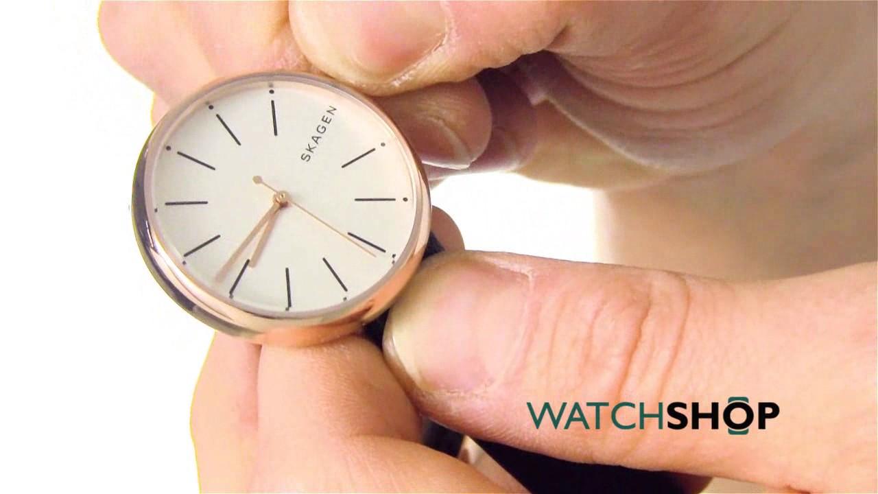 ea37474c8c015 Skagen Ladies  Signatur Watch (SKW2592) - YouTube