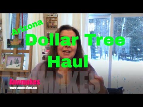 Dollar Tree Haul From Arizona