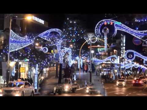 (해운대)거리장식불빛(Haeundae) decorative street lights